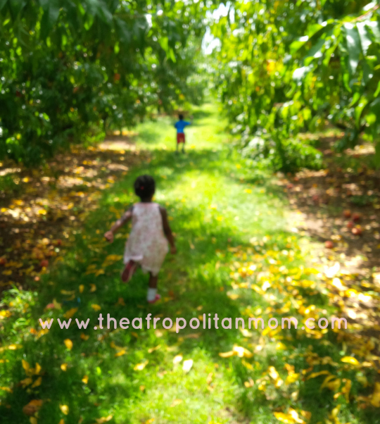 kids running at the orchard