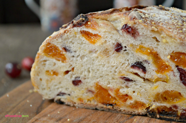 Cranberry Apricot Rustic Bread Maker