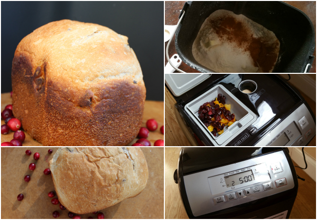 Cranberry Apricot Rustic Bread with bread maker