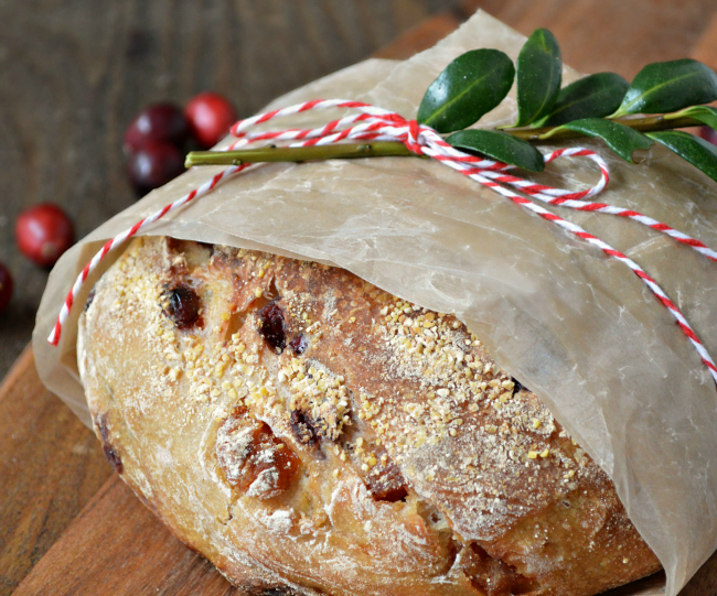 Cranberry Apricot Rustic Bread without bread maker