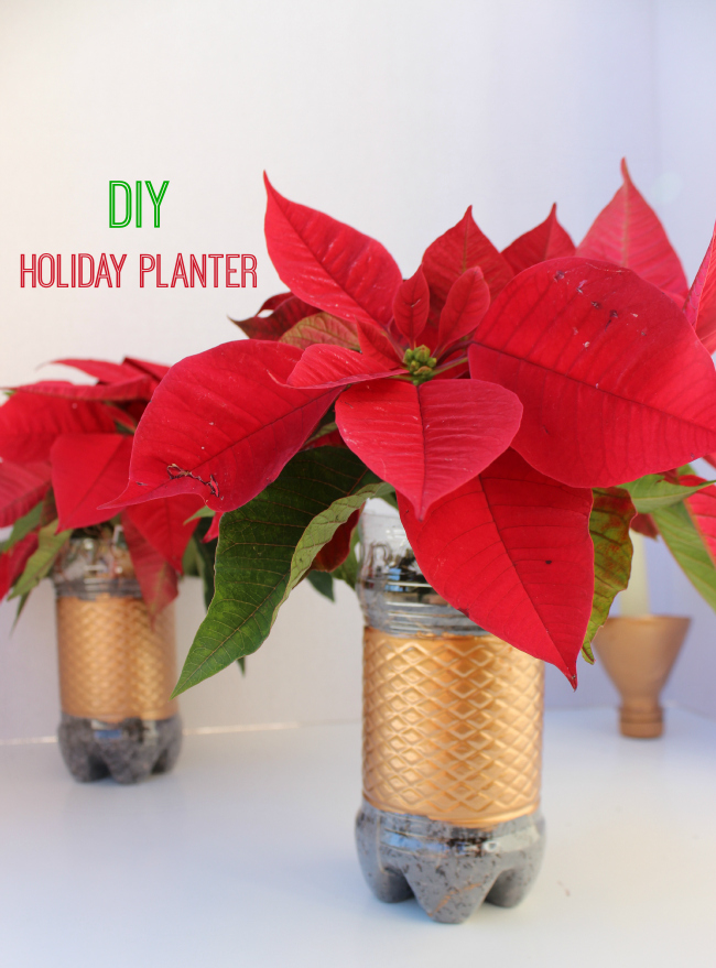 DIY Holiday Planter- Upcycled Water-bottle Craft