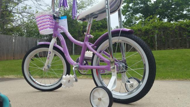 Schwinn SmartStart bike