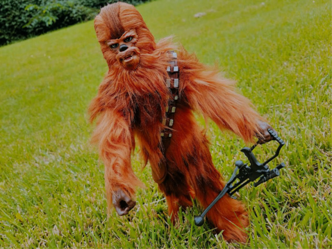 Chewbacca - Chewie - Star Wars