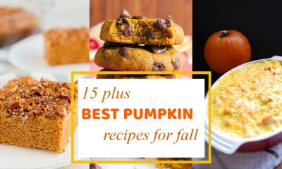 15 plus Best Pumpkin Recipes for Fall