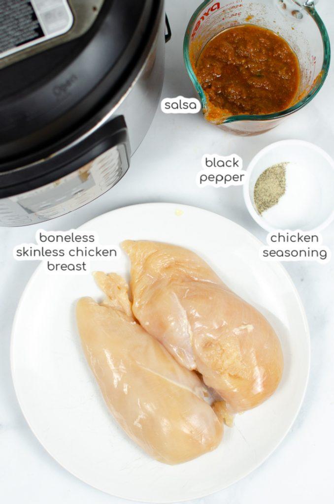 easy chicken salsa ingredients